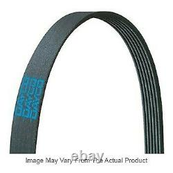 5080875 Dayco Drive Belt New for Freightliner Century Class Columbia FB65 FL112